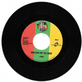J-Boog - Waiting In The Rain / Protoje & Kymani Marley - Rasta Love (Don Corleon / Buyreggae) 7""